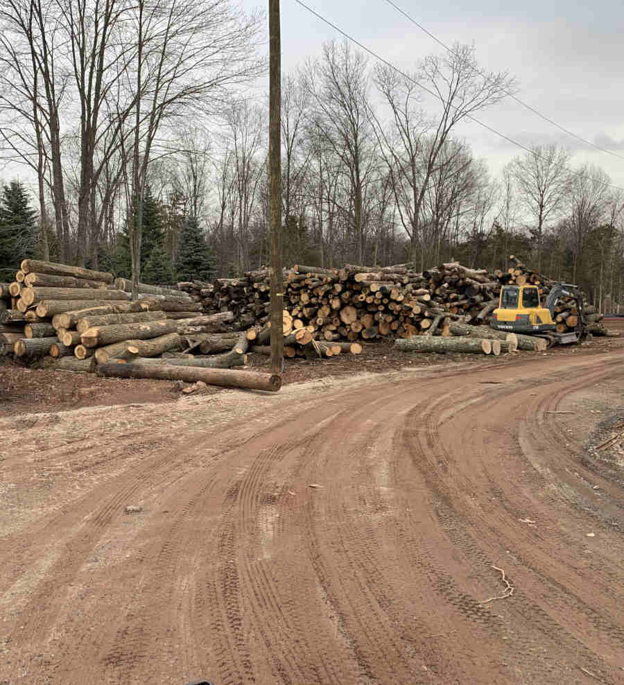 Escavator next to several piles of large logs